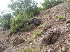 Geocaching 143