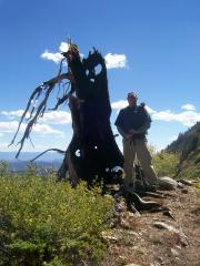 Mt Nebo 099
